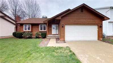 4202 Amelia Ave, Willoughby, OH 44094 - MLS#: 3989906