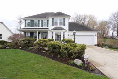 985 Abbey Dr, Madison, OH 44057 - MLS#: 3990247