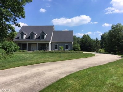 12256 Girdled Rd, Concord, OH 44077 - MLS#: 3990584
