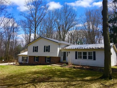 137 Lakeview Ln, Chagrin Falls, OH 44022 - MLS#: 3990665
