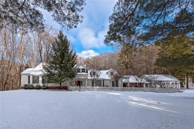 6505 Chagrin River Rd, Bentleyville, OH 44022 - MLS#: 3990871