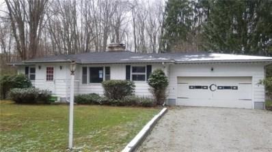 1008 Oak Tree Rd, Akron, OH 44320 - MLS#: 3991023