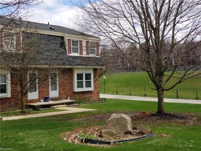 179 Ault St, Wadsworth, OH 44281 - MLS#: 3991031