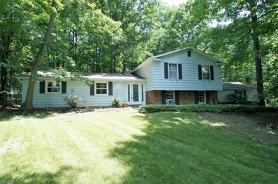 431 Somerset Dr, Chagrin Falls, OH 44022 - MLS#: 3991109