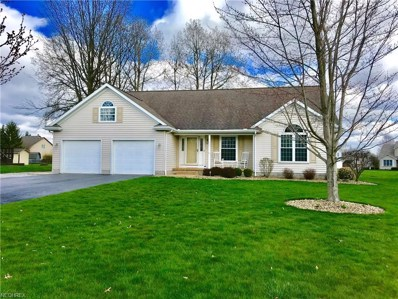 10425 Struthers Rd, New Middletown, OH 44442 - MLS#: 3991131