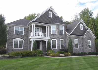 3052 Ansonia Dr, Twinsburg, OH 44087 - MLS#: 3991356