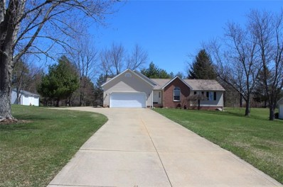 9160 Page Rd, Streetsboro, OH 44241 - MLS#: 3991547
