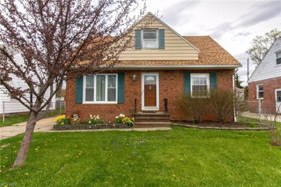 225 E 327th St, Willowick, OH 44095 - MLS#: 3991556