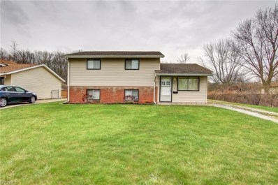 4252 Holl Ave, Sheffield Lake, OH 44054 - MLS#: 3991685