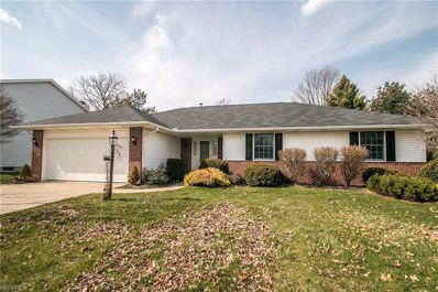 439 Cambridge Dr, Medina, OH 44256 - MLS#: 3991686