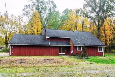 19351 Station Rd, Columbia Station, OH 44028 - MLS#: 3991968