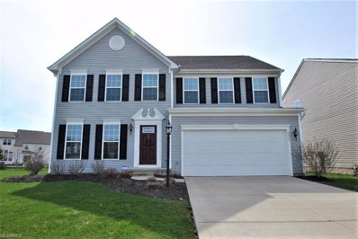 10473 Joyce Ct, Reminderville, OH 44202 - MLS#: 3992251