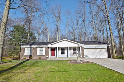 7521 Dorwick Dr, Northfield, OH 44067 - MLS#: 3992998