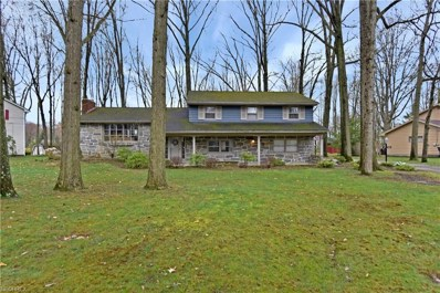 293 Bradford, Canfield, OH 44406 - MLS#: 3993086