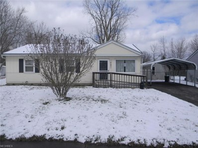 9881 Green Dr, Windham, OH 44288 - MLS#: 3993209