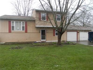 9876 Belden Dr, Windham, OH 44288 - MLS#: 3993216