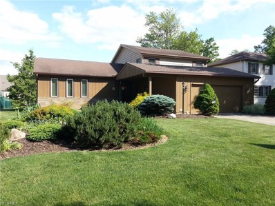 6815 Paula Dr, Middleburg Heights, OH 44130 - MLS#: 3993274