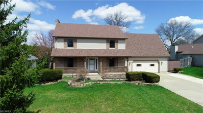 6480 S Timberidge Dr, Youngstown, OH 44515 - MLS#: 3993550