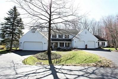 205 Manor Brook Dr, Chagrin Falls, OH 44022 - MLS#: 3993965