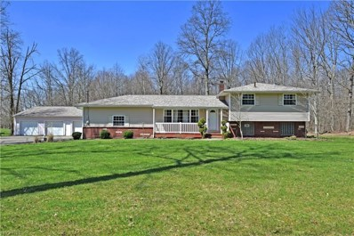 1943 Braceville Robinson Rd, Southington, OH 44470 - MLS#: 3994144