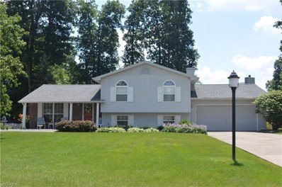 7054 Berry Blossom Dr, Canfield, OH 44406 - MLS#: 3994319