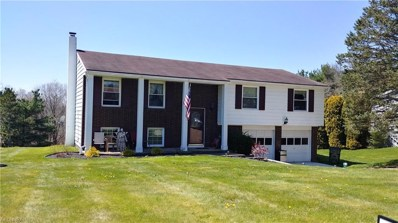 61419 Summit Rd, New Concord, OH 43762 - MLS#: 3994593