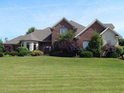 4511 Lakeview Glen Dr, Medina, OH 44256 - MLS#: 3994858