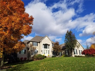 4573 Forest Brooke Ct SOUTH, Richfield, OH 44286 - MLS#: 3994881