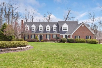 5455 Woodland, Canfield, OH 44406 - MLS#: 3994911