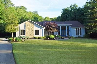 8260 Eagle Ridge Dr, Concord, OH 44077 - MLS#: 3995031