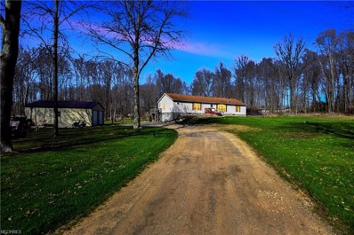 5110 State Route 82, Newton Falls, OH 44444 - MLS#: 3995166
