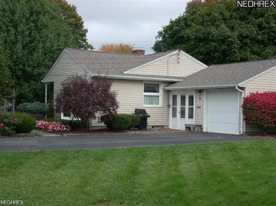 55 Indian Lake Blvd, Canfield, OH 44406 - MLS#: 3995344