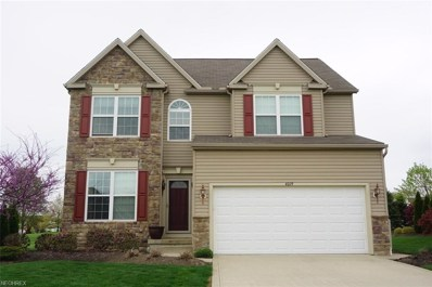 4019 Turnberry Dr, Medina, OH 44256 - MLS#: 3995375