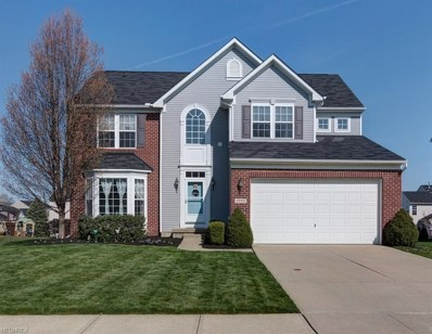 1593 Elderberry Ln, Painesville, OH 44077 - MLS#: 3995511