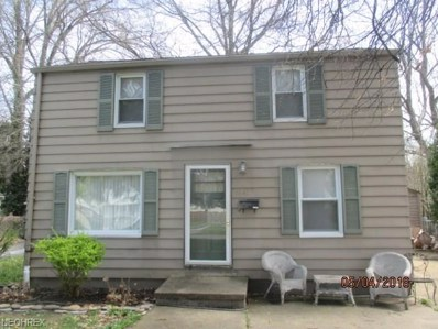 3641 Stratmore Ave, Youngstown, OH 44511 - MLS#: 3995661
