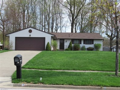 1667 Tinkers View Dr, Twinsburg, OH 44087 - MLS#: 3995973