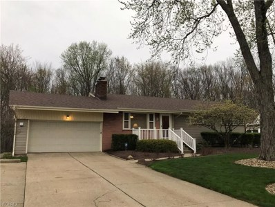 4365 Shady Rd, Youngstown, OH 44505 - MLS#: 3996101