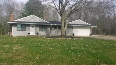 1378 Lake Vue Dr, Roaming Shores, OH 44085 - MLS#: 3996152
