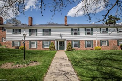 7035 Carriage Hill Dr UNIT 201, Brecksville, OH 44141 - MLS#: 3996223