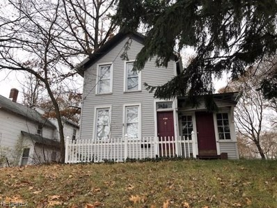 294 Silver St, Akron, OH 44303 - MLS#: 3996408