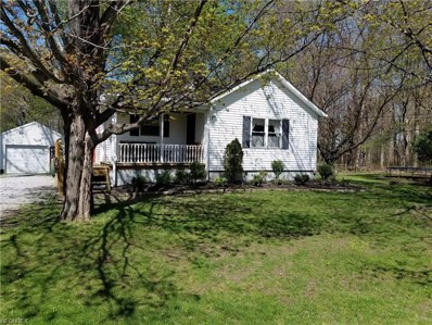 4685 Davis Rd, Perry, OH 44081 - MLS#: 3996660