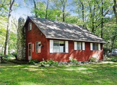 911 Evelyn Rd, Put-in-Bay, OH 43456 - MLS#: 3996729