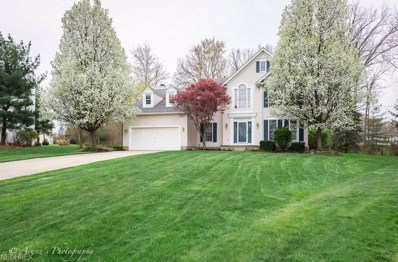 2832 Sikes Ln, Twinsburg, OH 44087 - MLS#: 3996757