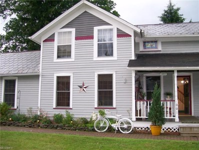 1001 Main St, Grafton, OH 44044 - MLS#: 3997053