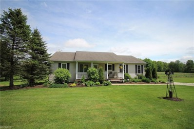 11442 Mantua Center Rd, Mantua, OH 44255 - MLS#: 3997252