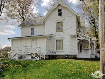 105 Mill Street, Andover, OH 44003 - #: 3997408