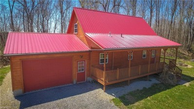 46380 County Road 55, Coshocton, OH 43812 - MLS#: 3997522