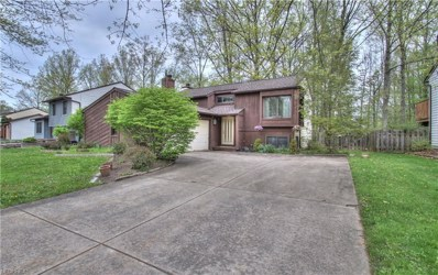 2925 Reeves Rd, Willoughby, OH 44094 - MLS#: 3998001