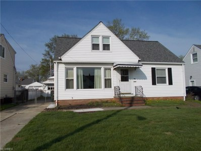 318 E 308th St, Willowick, OH 44095 - MLS#: 3998547