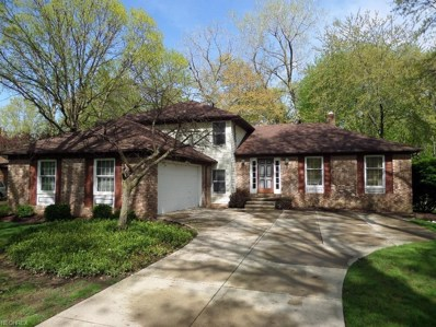 6605 Beechwood Dr, Independence, OH 44131 - MLS#: 3998579